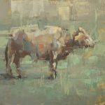 Cow Study